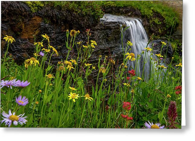 Waterfall Behind Wildflowers Greeting Card