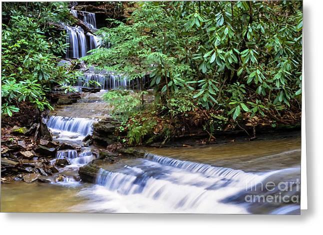 Waterfall Birch River Greeting Card by Thomas R Fletcher