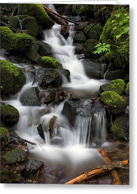 Greeting Card featuring the photograph Waterfall Mount Rainier National Park by Bob Noble Photography