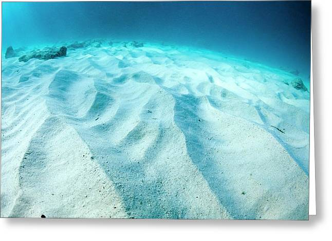 Wave Patterns On Sandy Sea Bed Greeting Card by Georgette Douwma