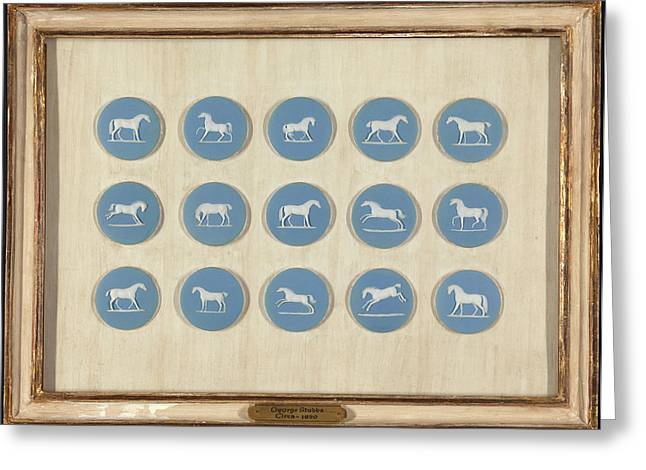 1 Wedgwood Horse Studies In Relief, After George Stubbs Greeting Card by Litz Collection