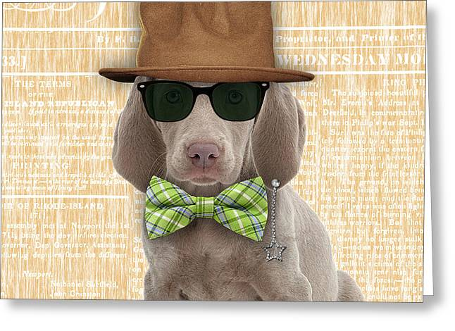 Weimaraner Bowtie Collection Greeting Card by Marvin Blaine