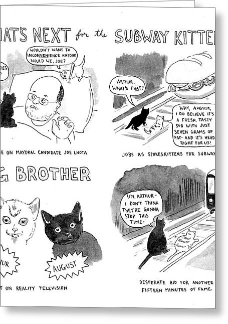 What's Next For The Subway Kittens Greeting Card