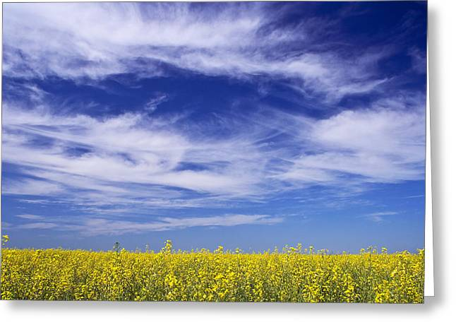 Greeting Card featuring the photograph Where Land Meets Sky by Keith Armstrong