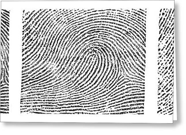 Whorl, Loop, And Arch Fingerprints Greeting Card