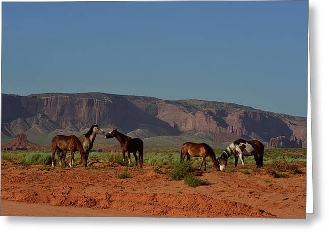 Wild Horses In Monument Valley Greeting Card