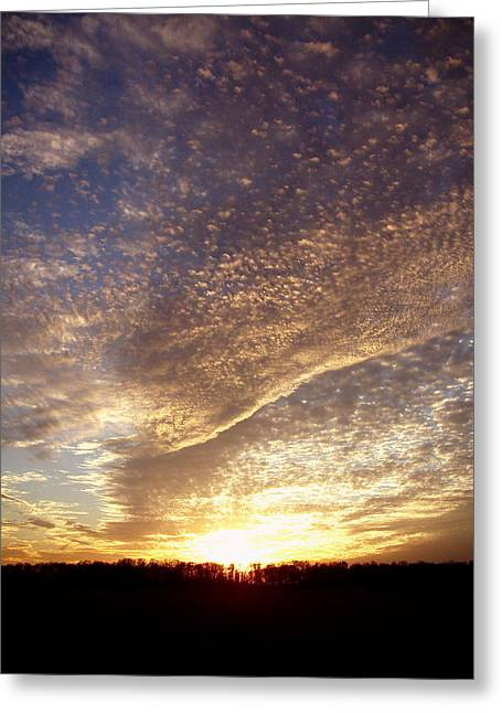 Greeting Card featuring the photograph Wild Sky 2 by Cynthia Lassiter