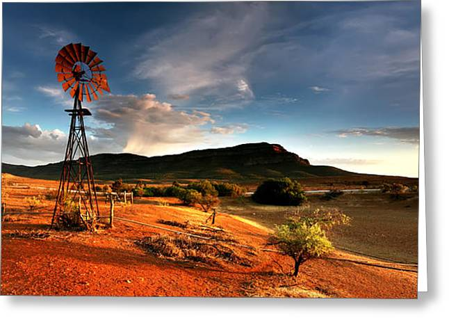 Wilpena Pound Greeting Card