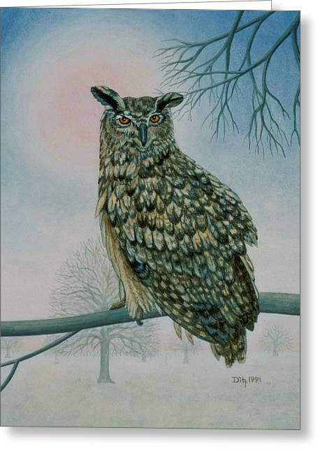 Winter Owl Greeting Card by Ditz