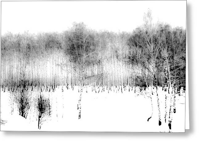 Winter Painting II. Ink Drawing By Nature Greeting Card by Jenny Rainbow