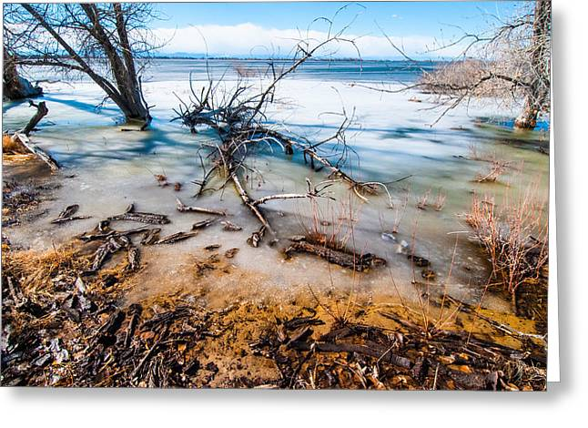 Greeting Card featuring the photograph Winter Shore At Barr Lake by Tom Potter