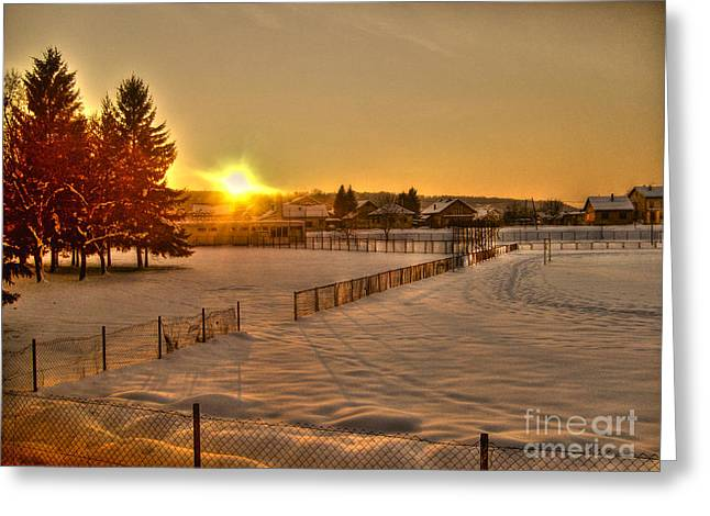 Winter Sunset Greeting Card by Nina Ficur Feenan