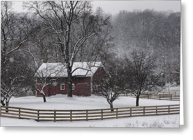Winter Wonder Greeting Card by Ann Bridges