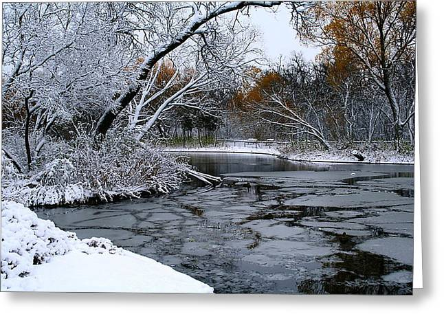 Greeting Card featuring the photograph Winter Wonderland by Larry Trupp