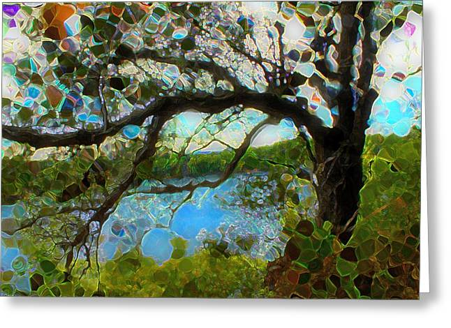 Wishing Tree Greeting Card by Terence Morrissey