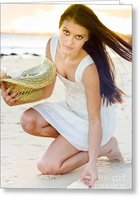Woman Collecting Sea Shells At Sunset Greeting Card by Jorgo Photography - Wall Art Gallery