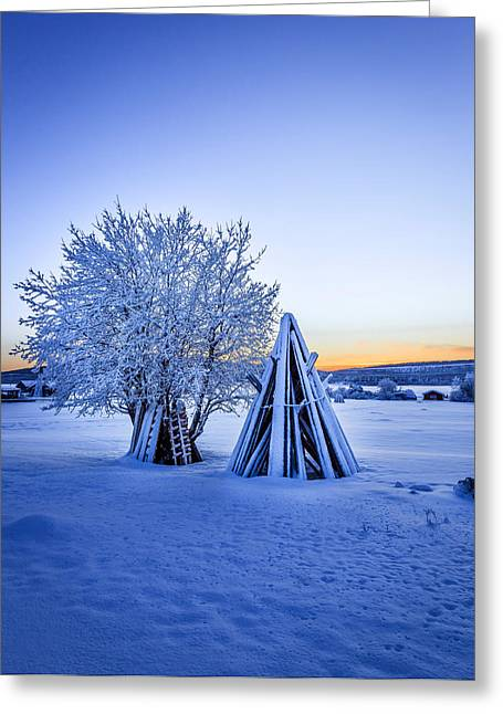 Wood Stacked And A Snow Covered Tree Greeting Card by Panoramic Images