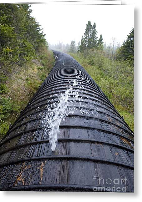 Wooden Penstock Greeting Card by David Nunuk