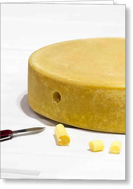 World Cheese Championships Greeting Card by Steven Ralser