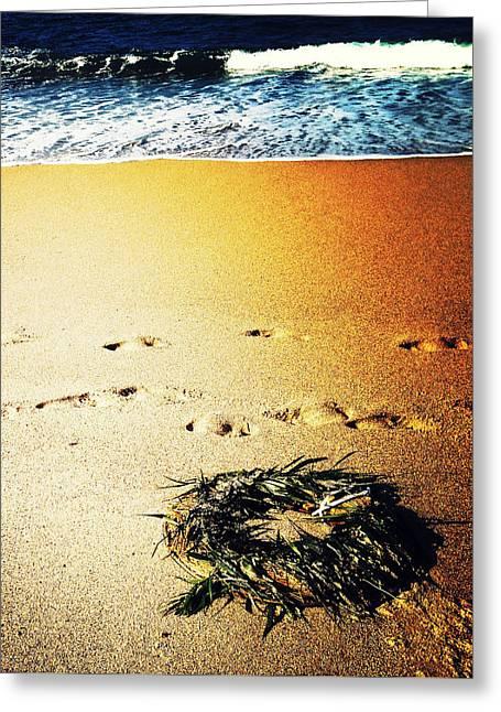 Wreath Washed Ashore Greeting Card by Natasha Marco
