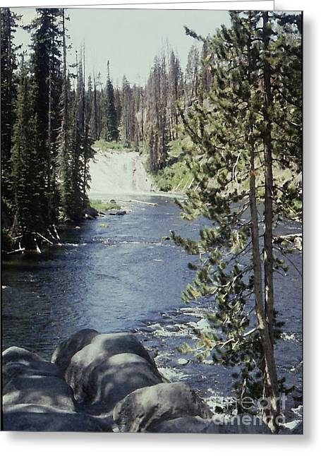 Wyoming Stream Greeting Card by Adeline Byford