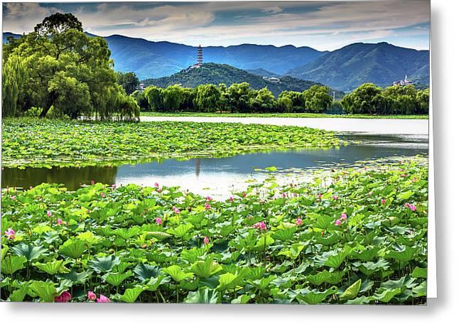 Yue Feng Pagoda Pink Lotus Pads Garden Greeting Card