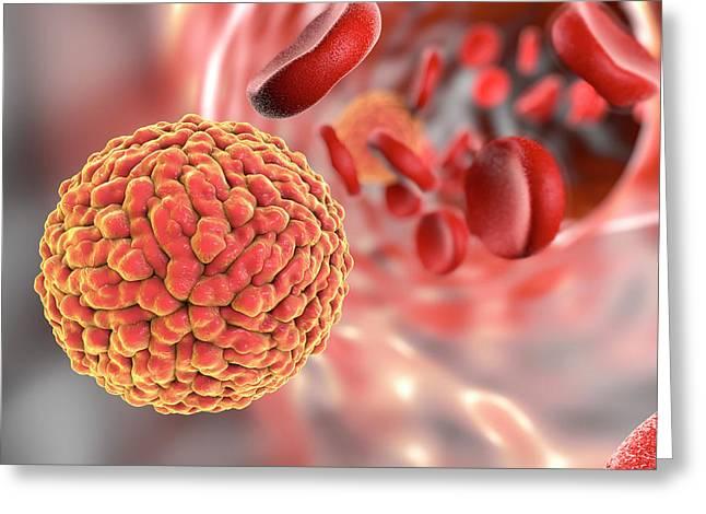 Zika Virus In Blood Greeting Card