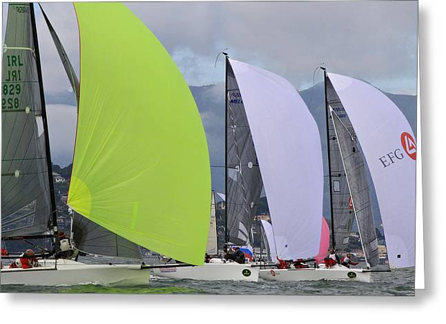 Bay Spinnakers Greeting Card by Steven Lapkin