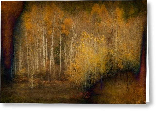 Fall At Sheep Creek Greeting Card