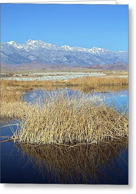 Owens Lake Greeting Card by Jim West