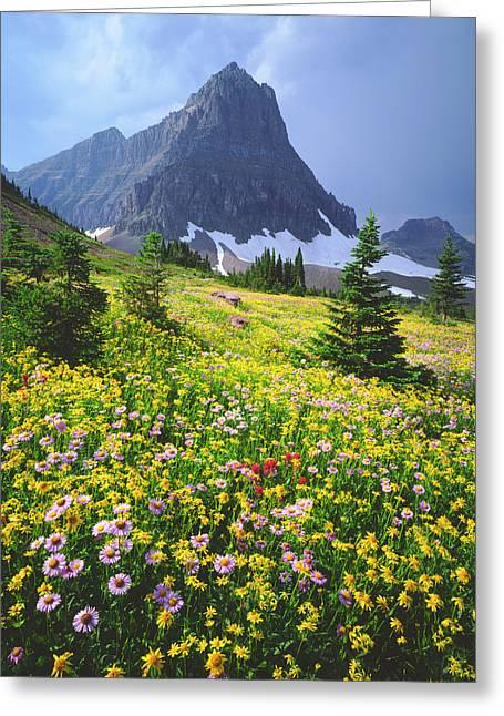 Usa, Montana, Glacier National Park Greeting Card by Jaynes Gallery