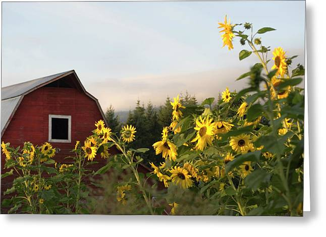 Canada, British Columbia, Vancouver Greeting Card by Kevin Oke