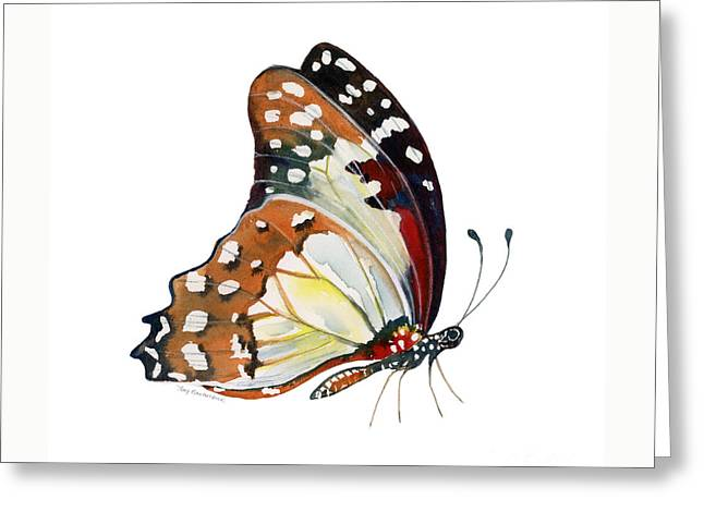 102 Perched White Lady Butterfly Greeting Card by Amy Kirkpatrick