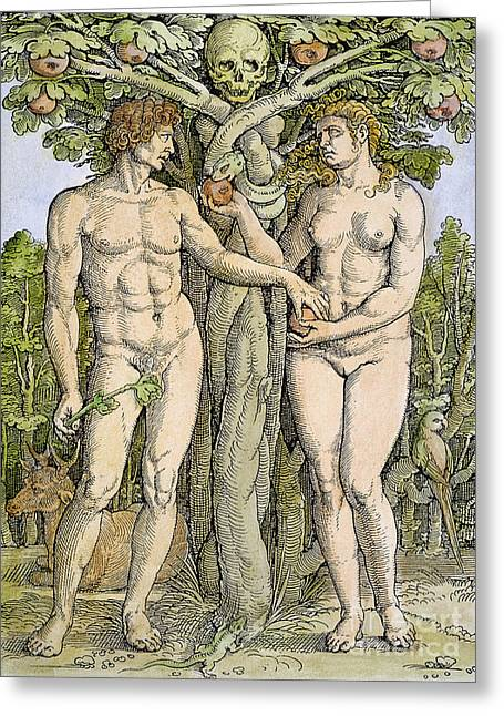 Adam And Eve Greeting Card by Granger