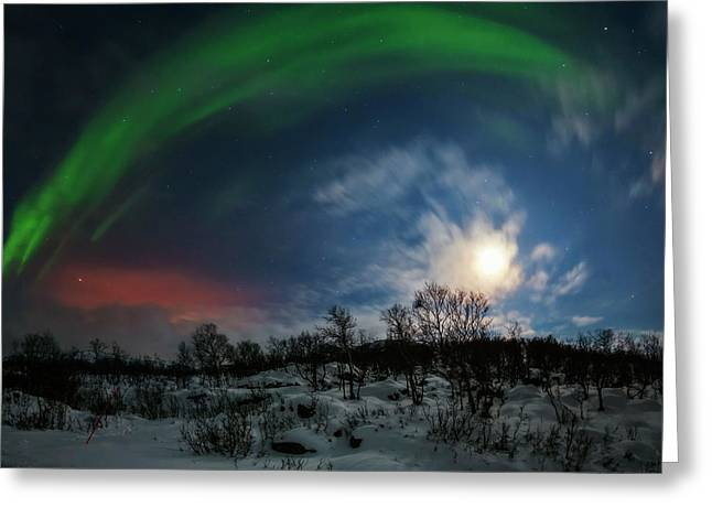 Aurora Borealis Greeting Card by Babak Tafreshi