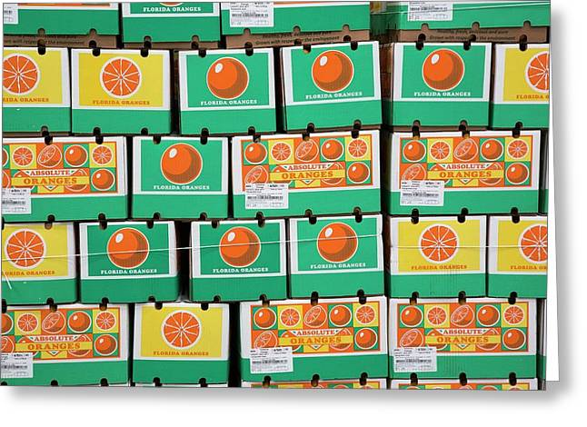 Orange Farming Greeting Card