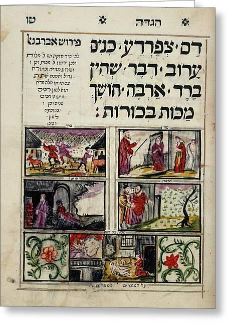 Passover Haggadah Greeting Card