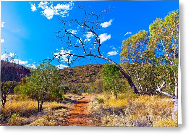 Serpentine Gorge Central Australia Greeting Card