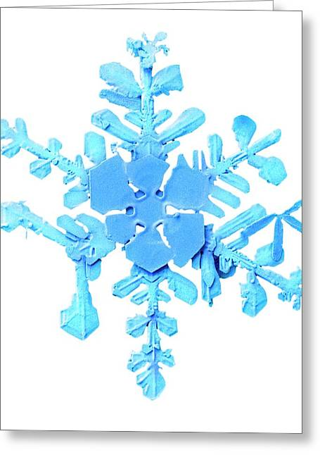 Snowflake Greeting Card by Ars/us Dept Of Agriculture