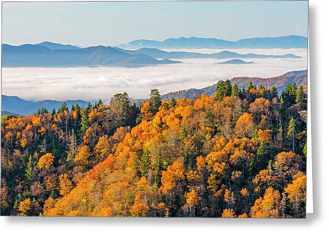 Tennessee, Great Smoky Mountains Greeting Card