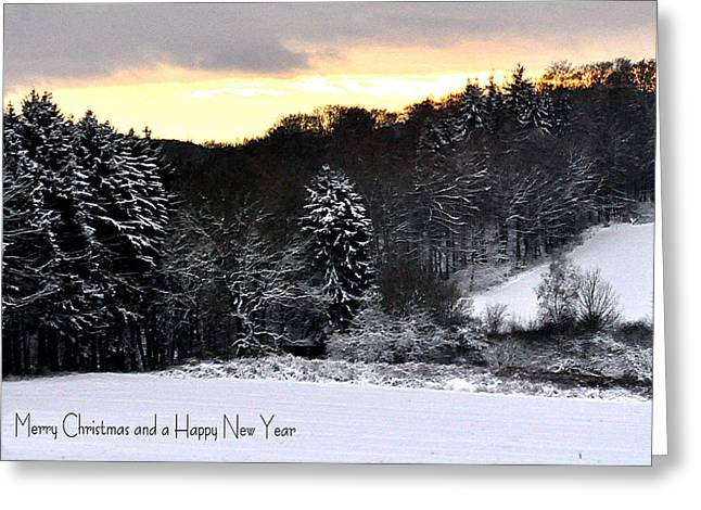 110 Snowscape Greeting Card by Patrick King