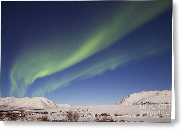 Aurora Borealis With Moonlight Greeting Card by Joseph Bradley