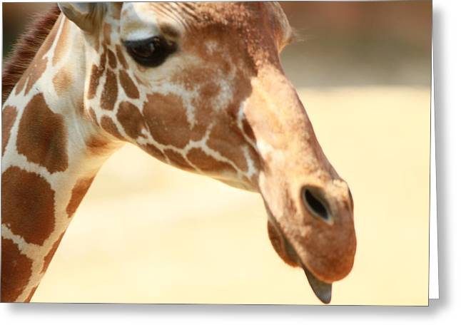 Giraff Greeting Card by Tinjoe Mbugus