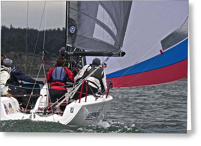 Whidbey Island Race Week Greeting Card by Steven Lapkin