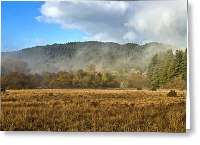 12.7 Meadow Panorama Greeting Card by Larry Darnell