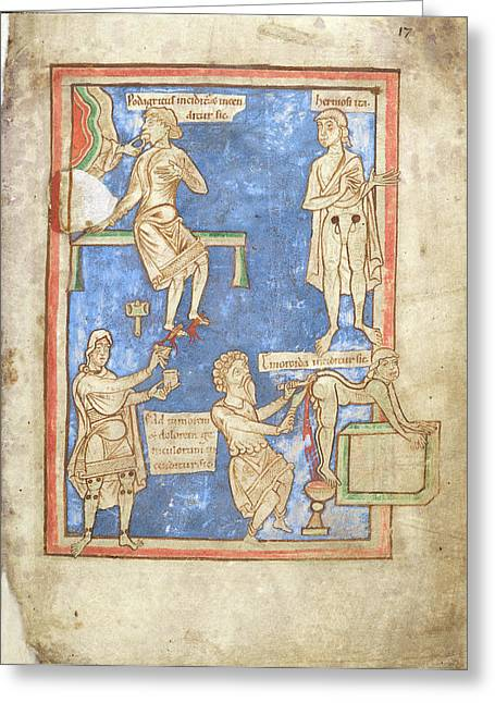 12th Century Medical Manuscript Greeting Card by British Library