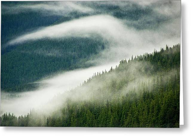 Usa, Alaska, Inside Passage Greeting Card by Jaynes Gallery