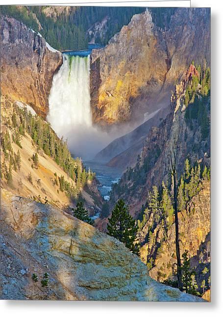 Wyoming, Yellowstone National Park Greeting Card by Elizabeth Boehm