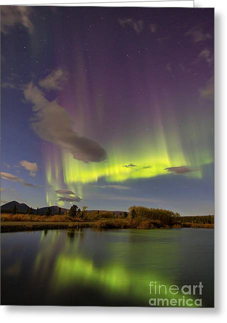 Aurora Borealis With Moonlight At Fish Greeting Card by Joseph Bradley
