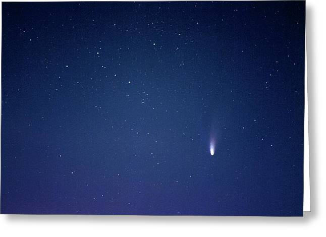 Comet Hale-bopp Greeting Card